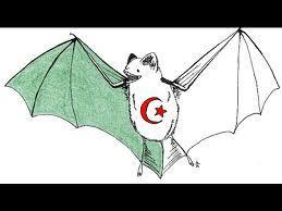 Groupe de Sauvegarde des Chauves souris d'Algerie